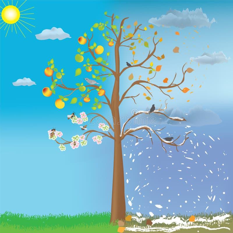 苹果更改四季节性符号结构树 向量例证