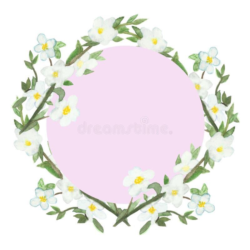苹果树开花的分支水彩春天豪华的框架  皇族释放例证