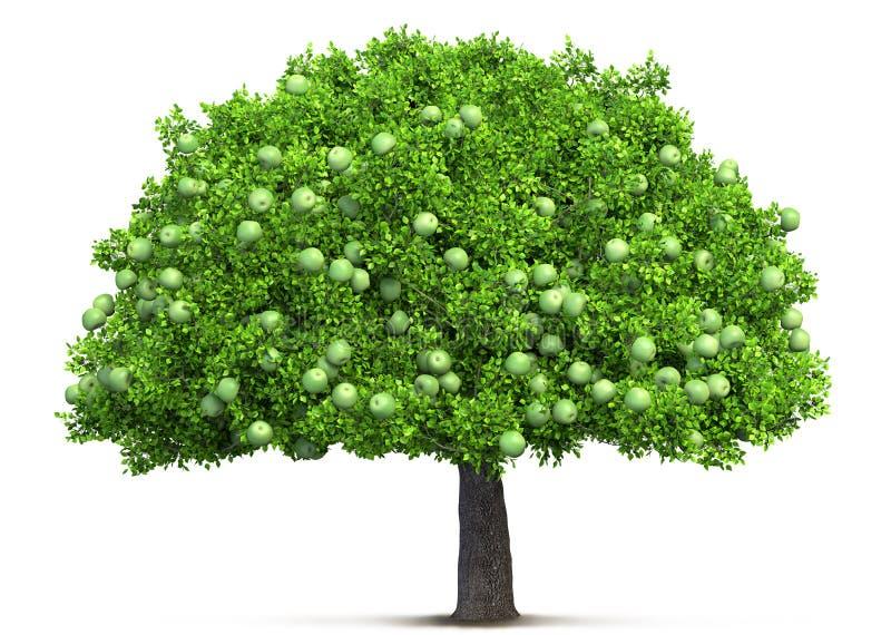 苹果树查出 向量例证
