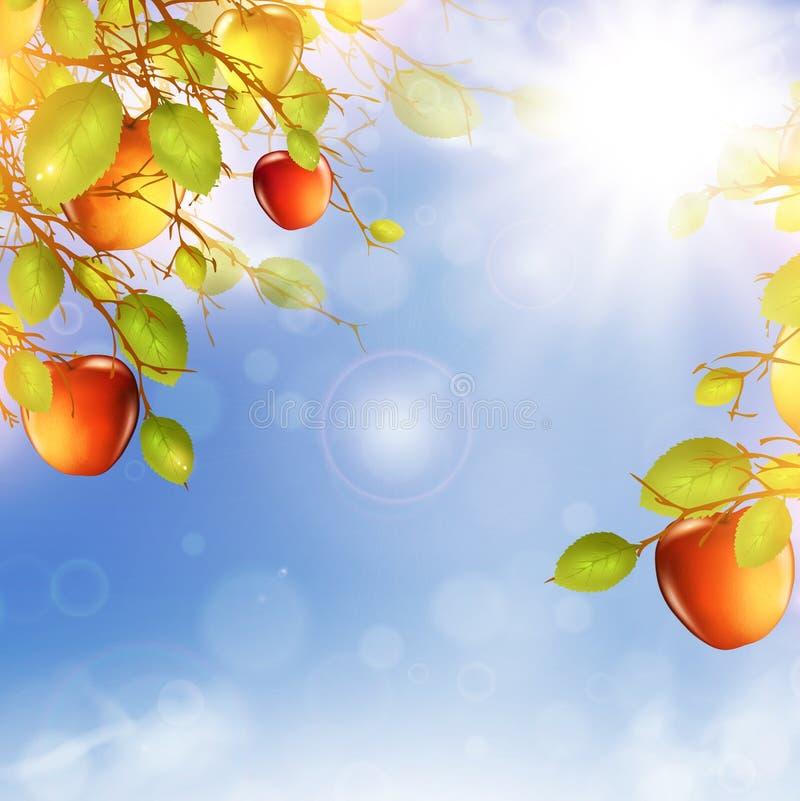 苹果树 皇族释放例证