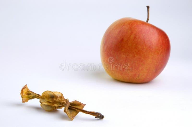 苹果核心 免版税库存照片