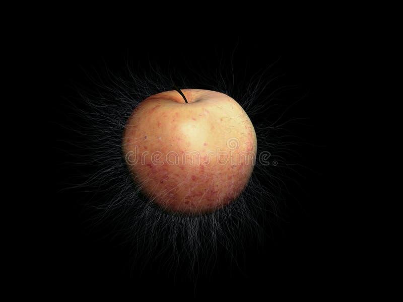 苹果演变 库存照片