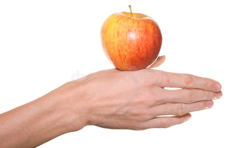 苹果现有量男性红色 库存图片