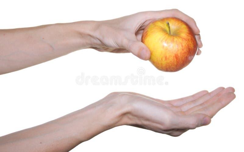 苹果现有量男性红色 图库摄影