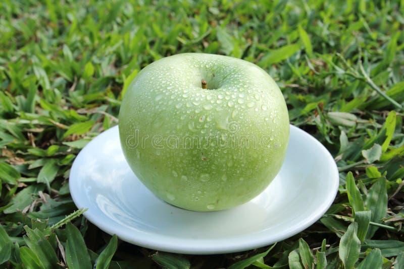 苹果盘绿色白色 图库摄影
