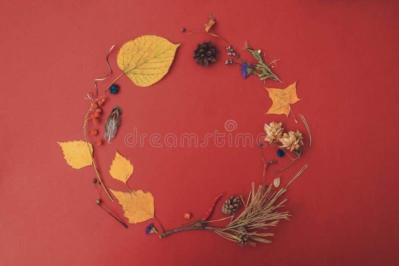 苹果秋天对光检查袋装花瓶的构成干燥叶子 圈子框架由黄色秋叶做成在红色背景 免版税图库摄影