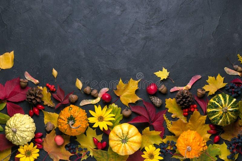 苹果秋天对光检查袋装花瓶的构成干燥叶子 框架由另外多色干叶子和南瓜制成在黑暗的背景 秋天,秋天概念 平的位置 免版税库存图片