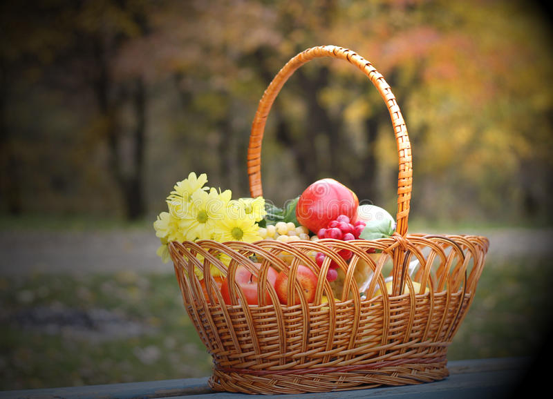 苹果秋天篮子果子葡萄 库存照片