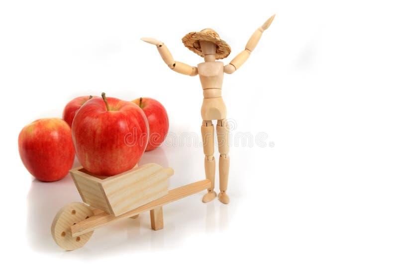 苹果种植者 免版税库存图片