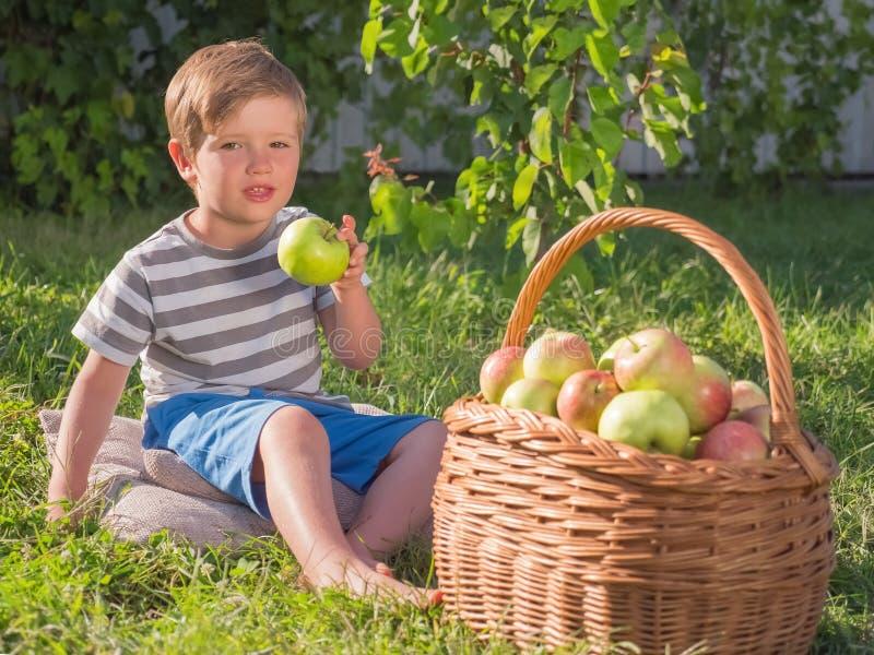 苹果篮子临近孩子 吃苹果的婴孩室外 免版税库存照片