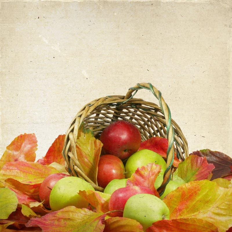 苹果篮子在秋叶的 免版税图库摄影