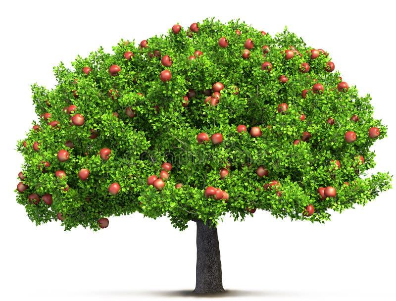 苹果红色射击结构树垂直 向量例证