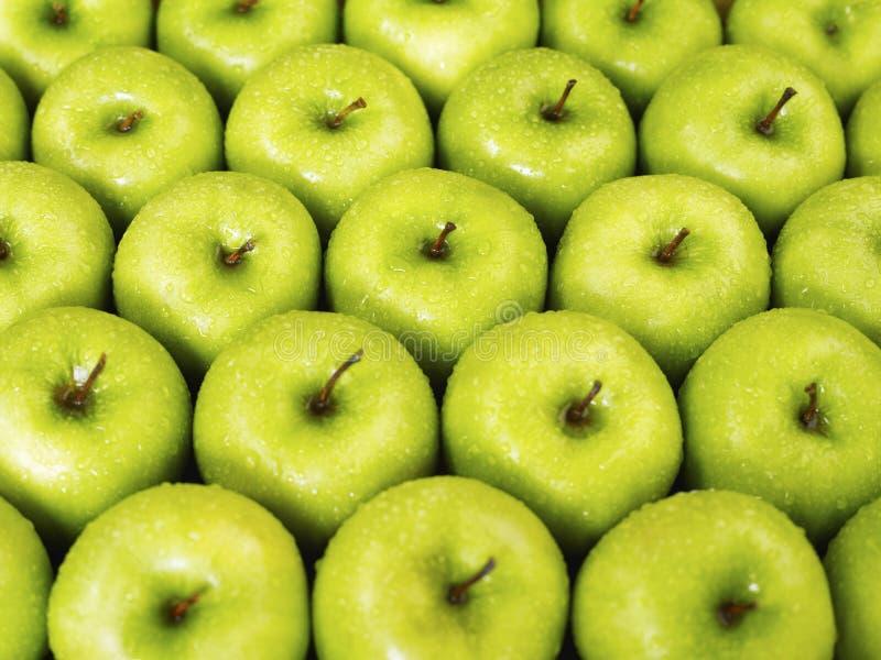 苹果绿色 库存照片