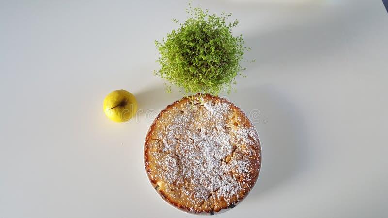 苹果背景烘烤特写镜头藏品查出显示白人妇女的饼红色 免版税库存照片
