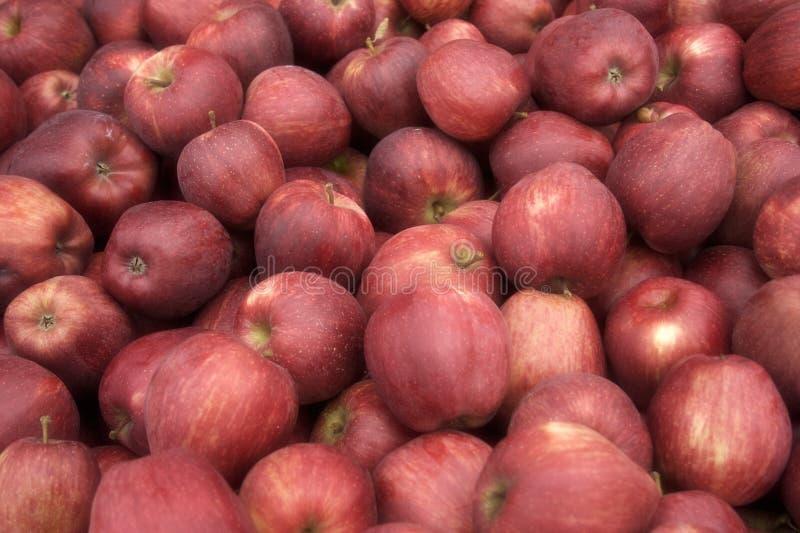 苹果蒲式耳 库存图片