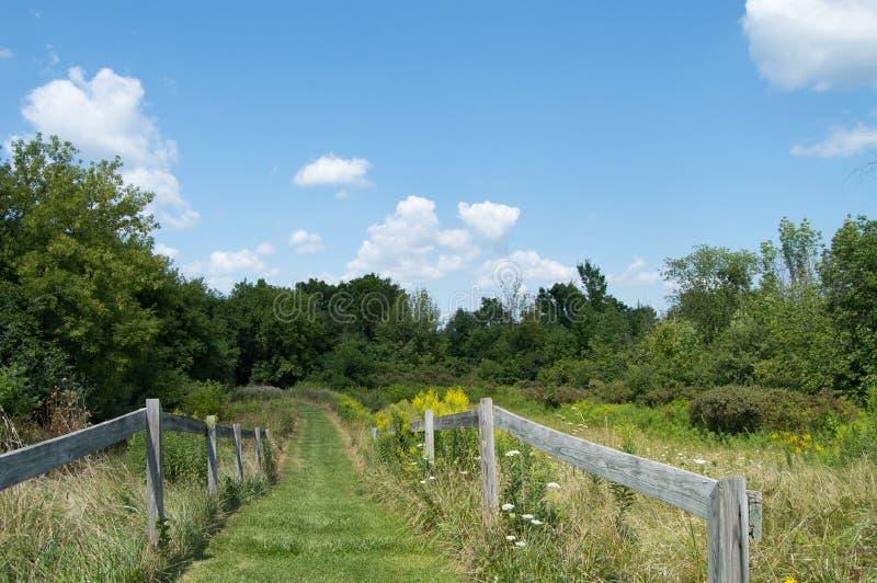 苹果覆盖花横向草甸本质星期日结构树 库存照片