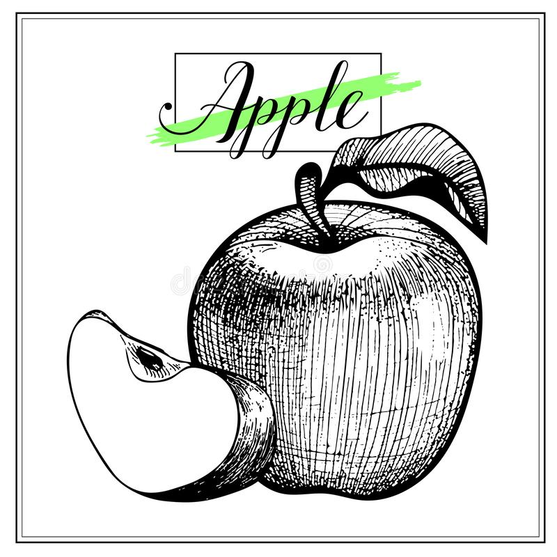 苹果计算机手凹道葡萄酒在白色背景隔绝的剪贴美术 皇族释放例证