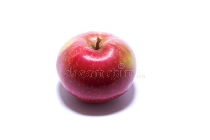 苹果计算机水多的红色 背景查出的白色 库存图片