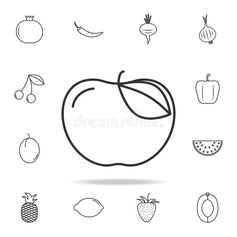 苹果计算机象 套水果和蔬菜象 优质质量图形设计 标志,概述标志汇集,简单的稀薄的线 向量例证
