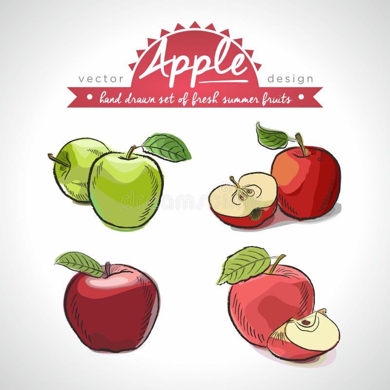 苹果计算机 传染媒介剪影的手拉的收藏详述了新鲜水果 查出 库存例证