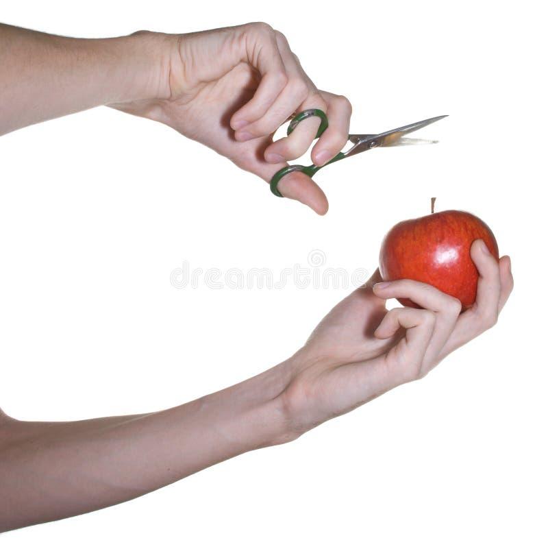 苹果递男性剪刀 库存照片
