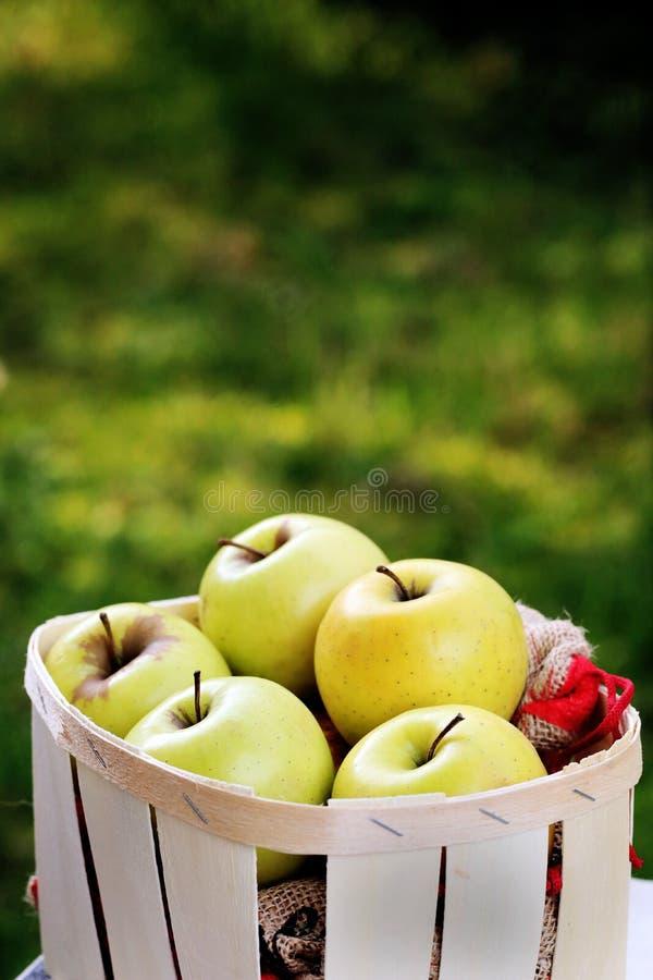 苹果金黄在一个木水果篮 免版税库存图片