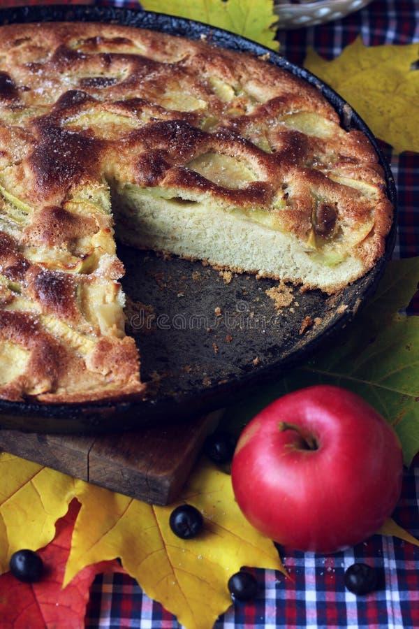 苹果饼  夏洛特 秋天食物静物画 图库摄影