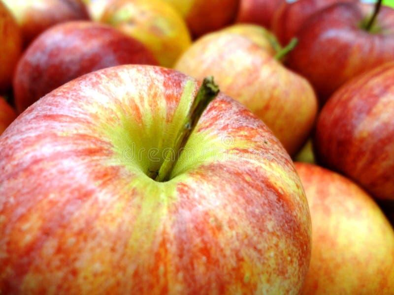 苹果(Ñ  бД Ð ¾ ки) 库存图片