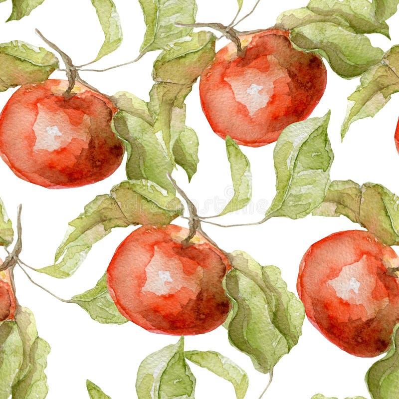 苹果水彩的无缝的样式 向量例证