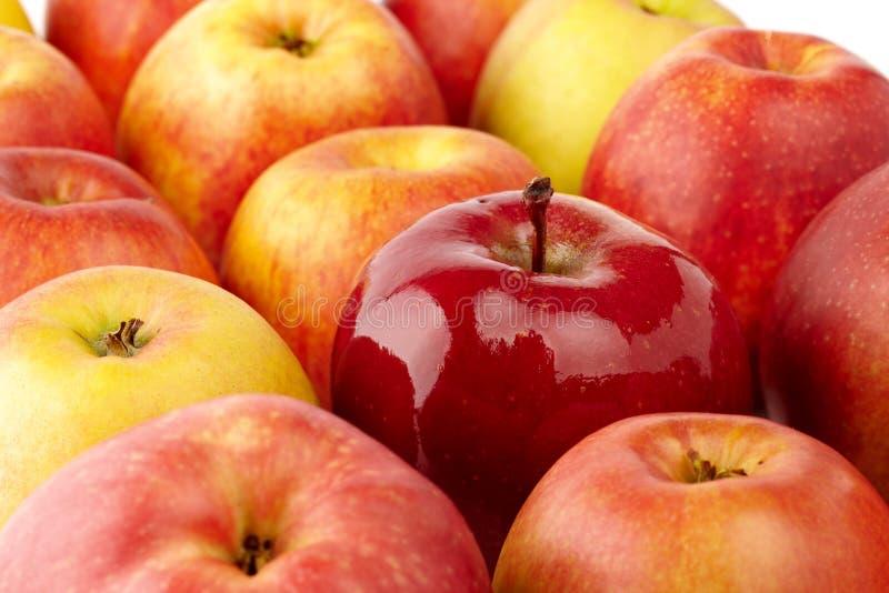 Download 苹果 库存图片. 图片 包括有 黄色, 高亮度显示, 水多, 水平, 空白, 成熟, 红色, 果子, 背包 - 22358185