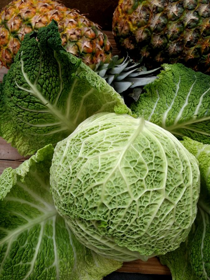 茂盛的圆白菜和两凤梨 图库摄影