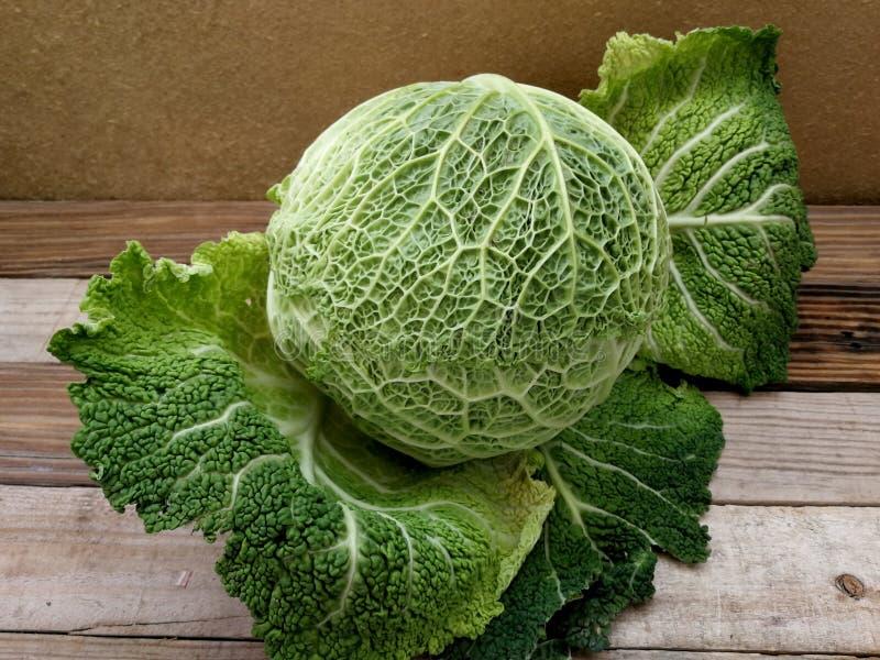 茂盛的圆白菜当菜背景 免版税图库摄影