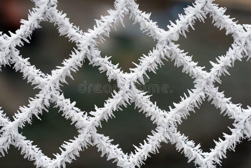 范围冷淡的纹理冬天 图库摄影