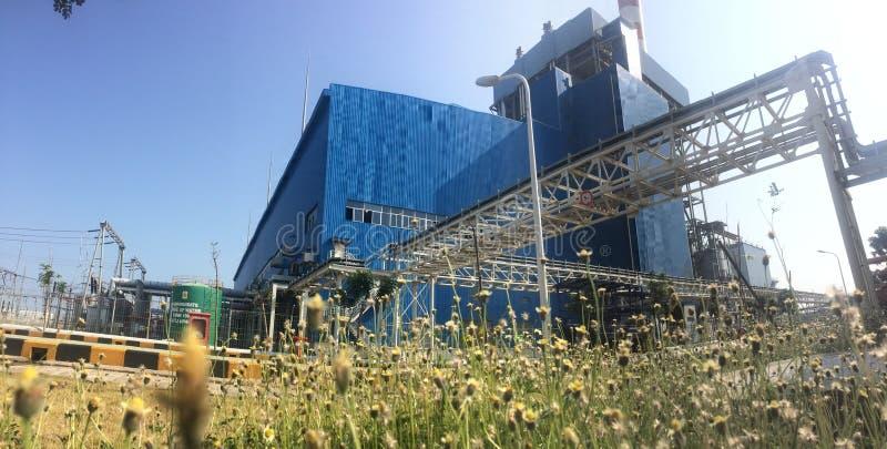 茅草屋顶在能源厂附近增长 免版税库存图片
