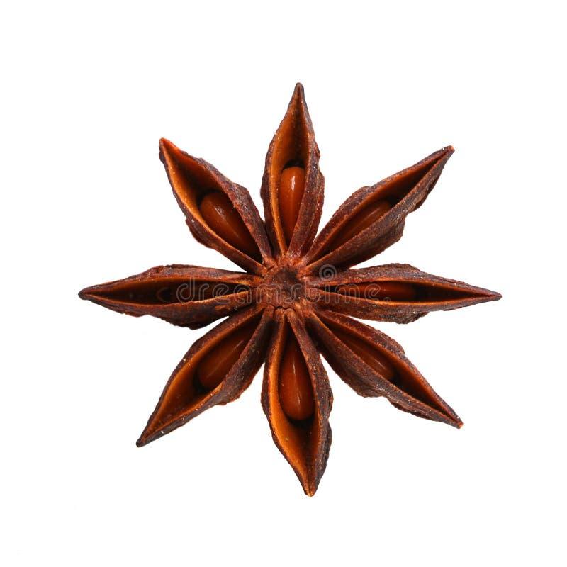 茴香星形 图库摄影