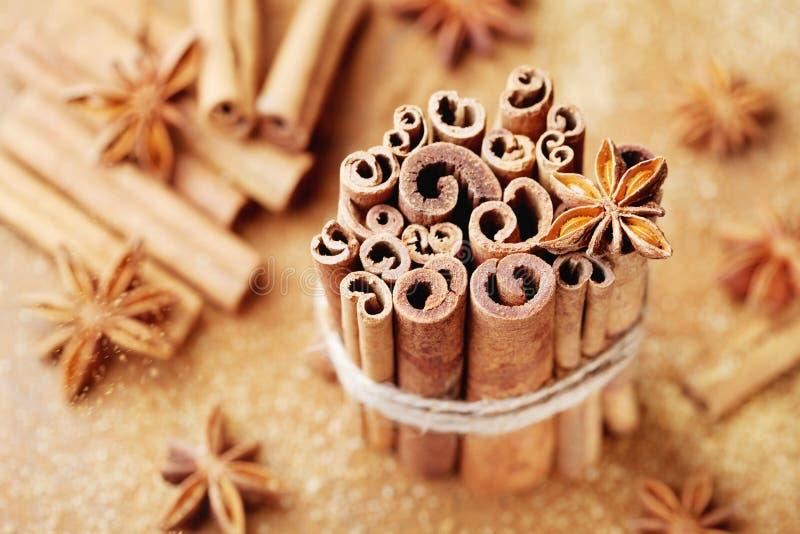 茴香烹调成份的圣诞节桂香加香料星形棍子 茴香星、肉桂条和红糖 免版税图库摄影