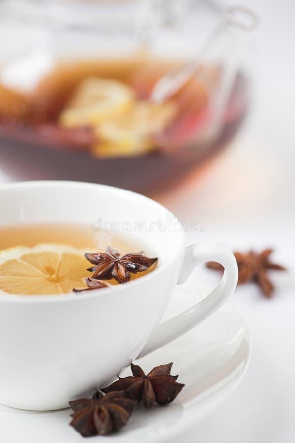 茴香草本柠檬茶 库存图片