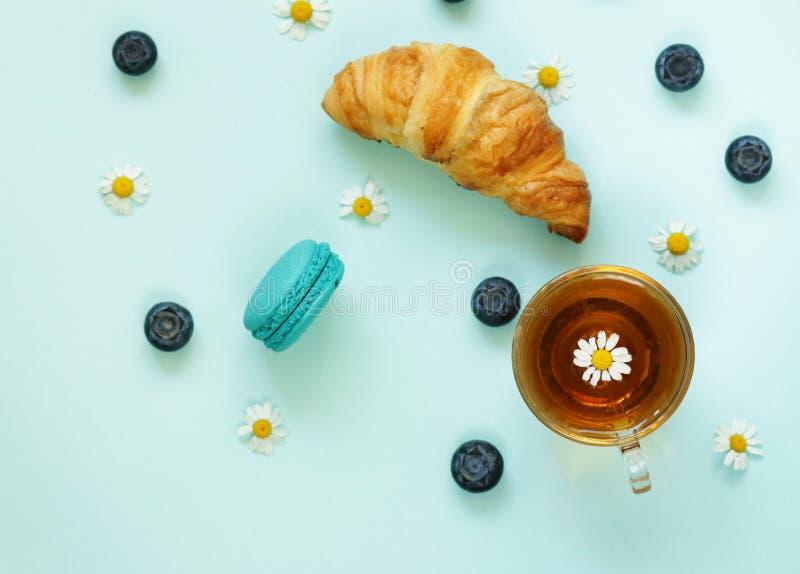 茶、蓝莓和春黄菊 免版税库存图片