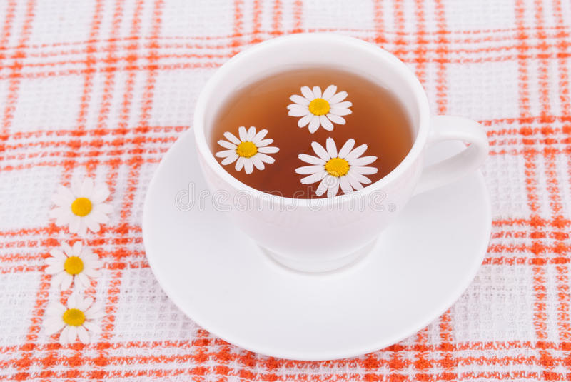 茶与春黄菊的 免版税库存照片