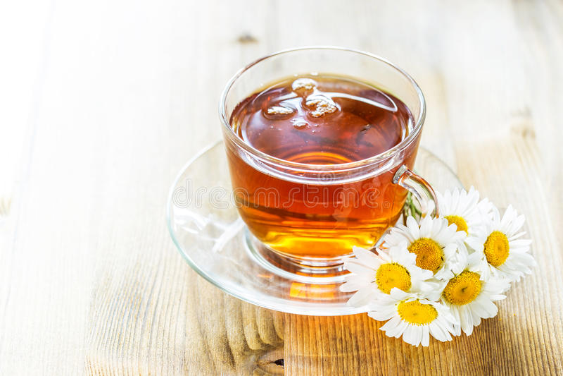 茶与春黄菊的 库存图片
