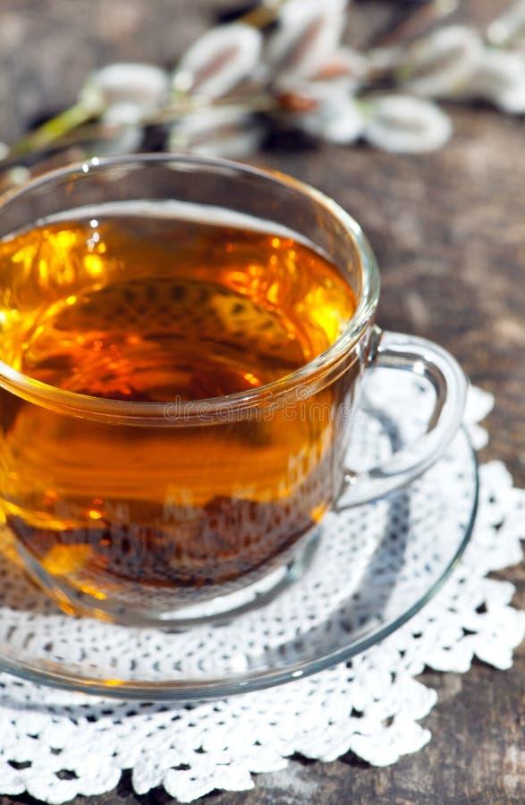 茶与杨柳分支的  库存图片