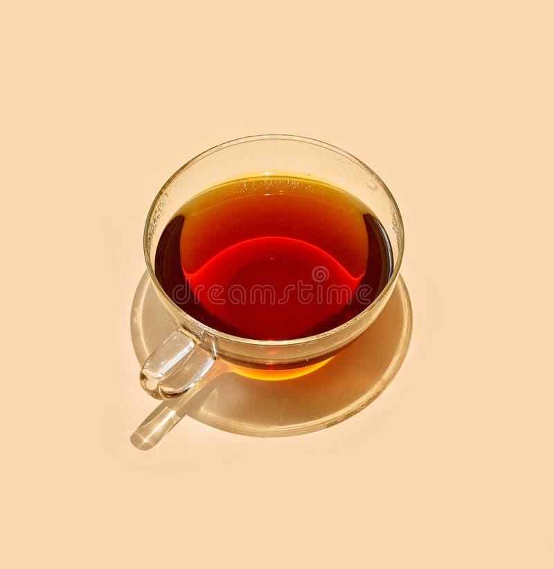 茶与长的阴影的 免版税图库摄影