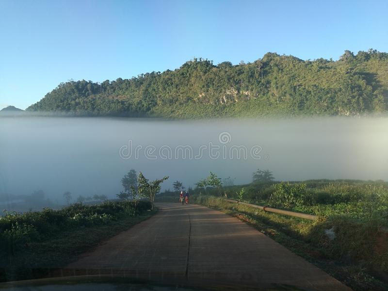 茶农场马路Chiangmai 免版税库存照片