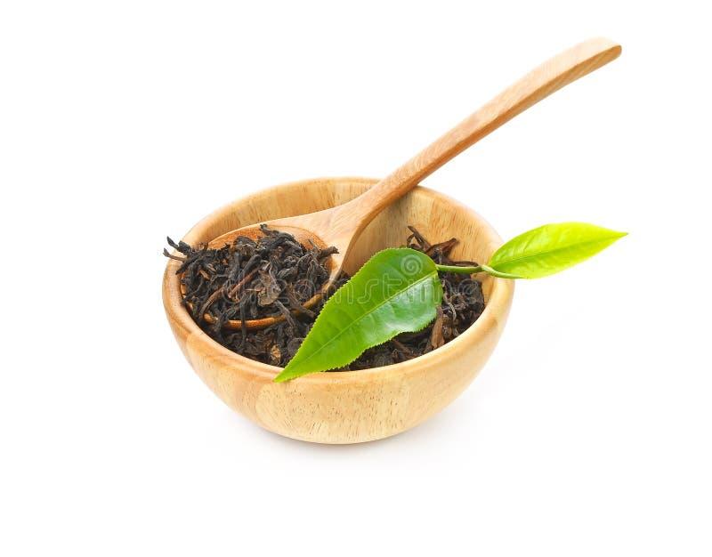 茶叶和干茶 免版税库存照片