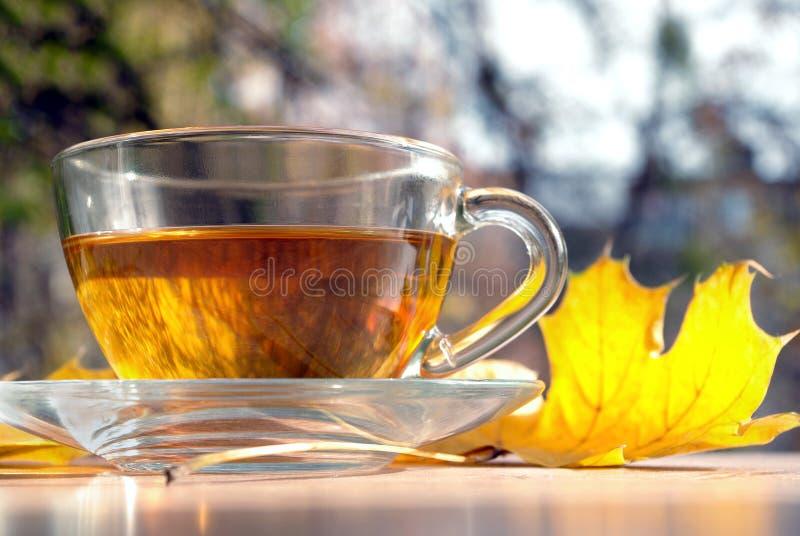 茶和在一张木桌上的黄色叶子 杯用在木桌上的热的茶在秋天背景 秋天背景特写镜头上色常春藤叶子橙红 库存照片