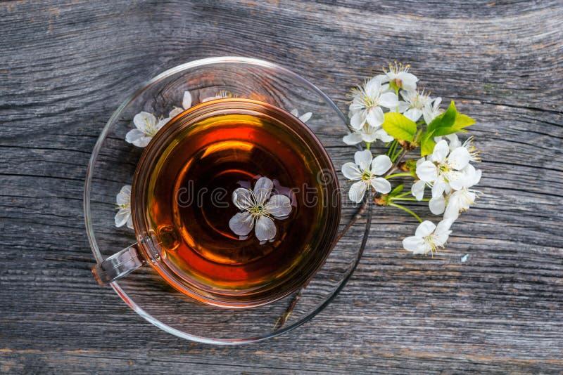 茶和樱桃在木背景分支 免版税库存图片