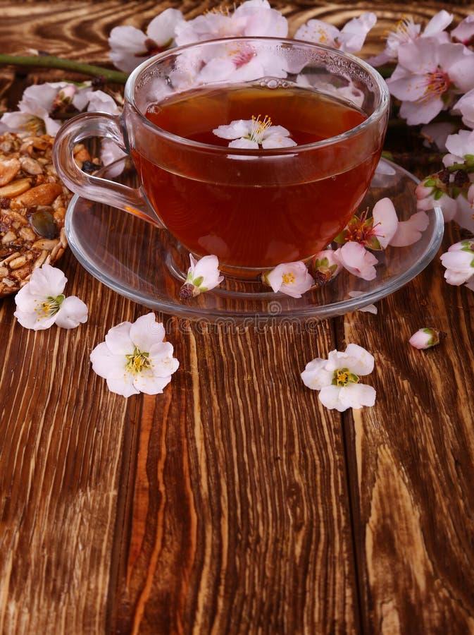 茶和樱花分支在木的 免版税库存照片