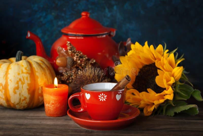 茶和秋天装饰 免版税库存照片
