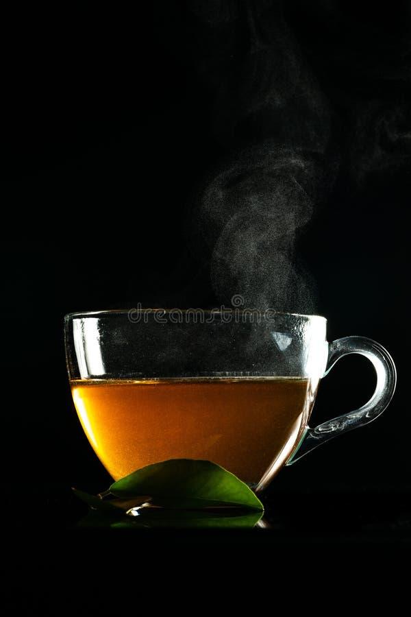 茶和蒸气 库存照片