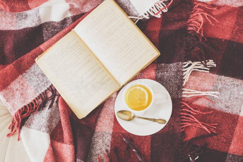 茶和读书 免版税库存照片